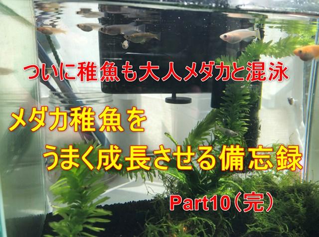 Part10完結アイキャッチ